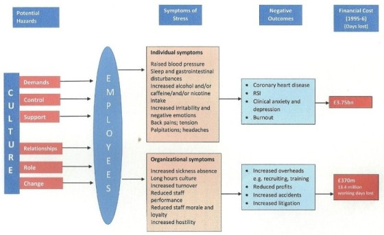 Cooper and Palmer_s model of work stress